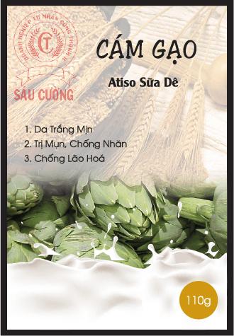 CAM GAO-01