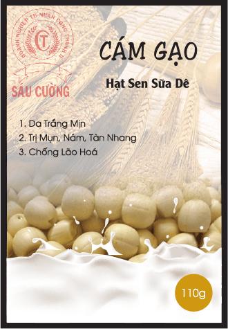 CAM GAO 5-01