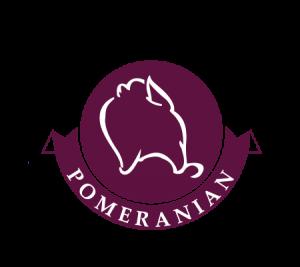 thiết kế logo thú cưng ở tphcm