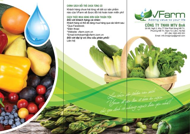 thiết kế brochuer