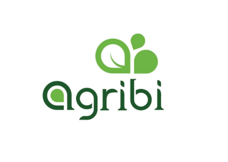 Thiết kế logo website uy tín